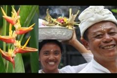 Bali-00-15